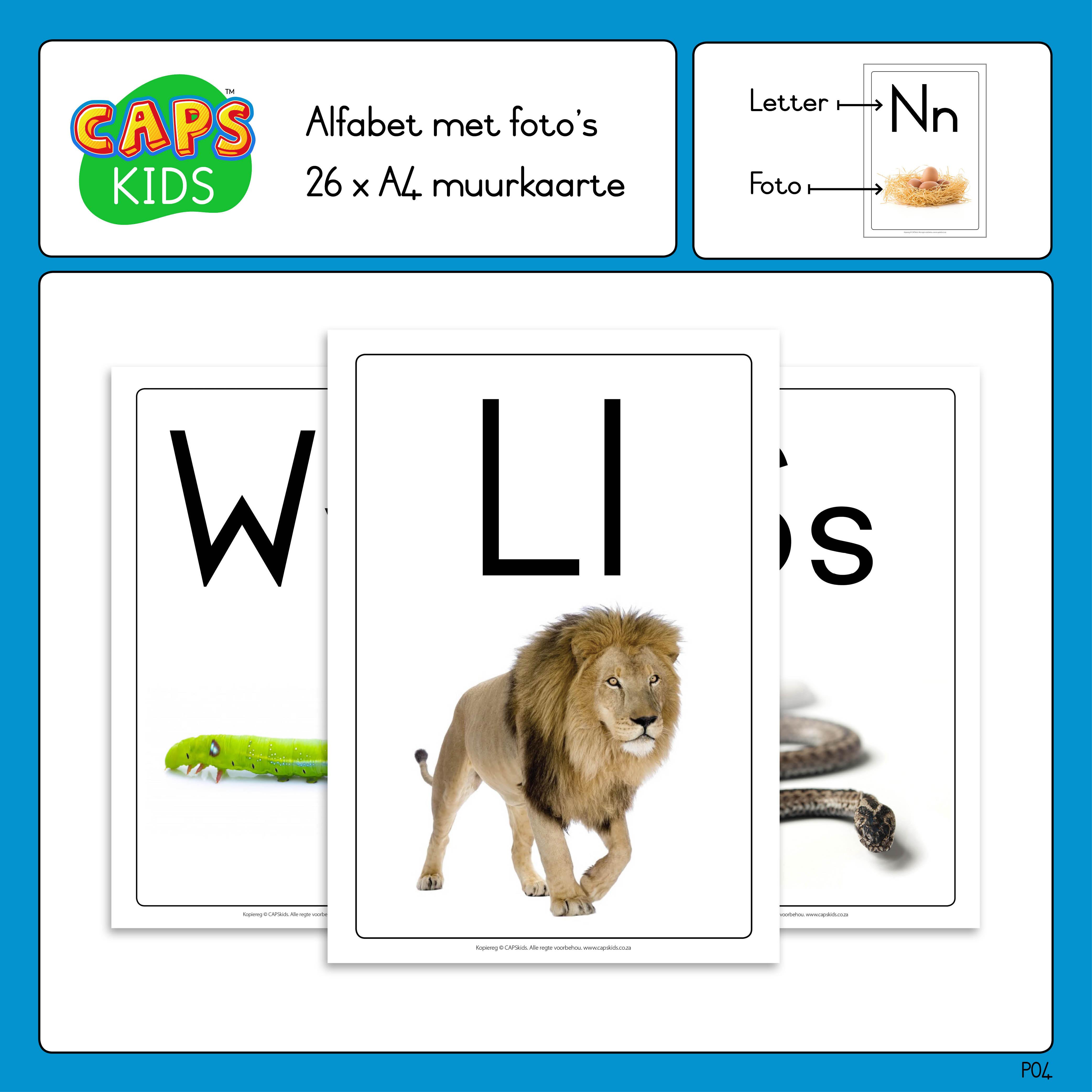 CAPSkids Afrikaanse alfabet plakkate muurkaarte ABC posters met foto